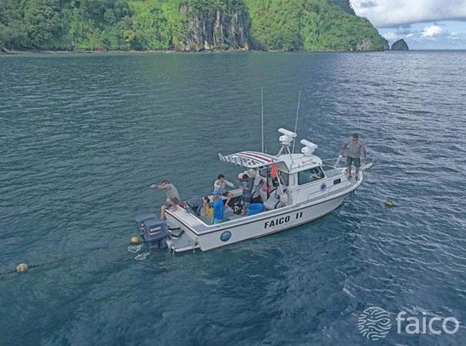 Faico II en Proyecto de marcaje de tiburones en la Isla del Coco Costa Rica