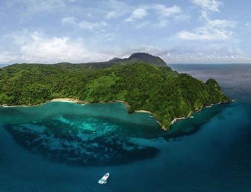 Isla del Coco: 40 años como un histórico y espectacular Parque Nacional