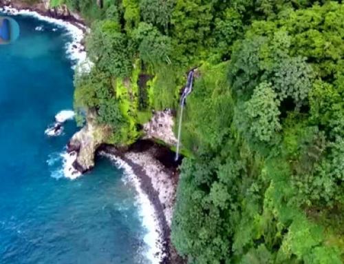 Isla del Coco celebra el 40 aniversario como Parque Nacional