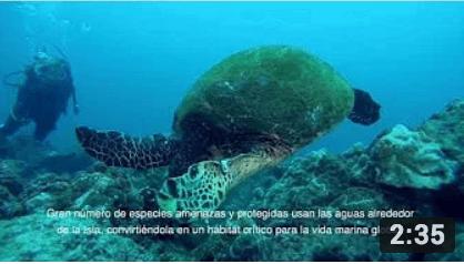 FAICO - Inspirando la conservación marina - 2018
