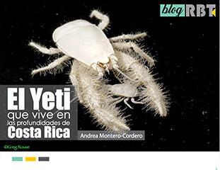 Publicacion: El Yeti que vive en las profundidades de Costa Rica - Por: Andrea Montero