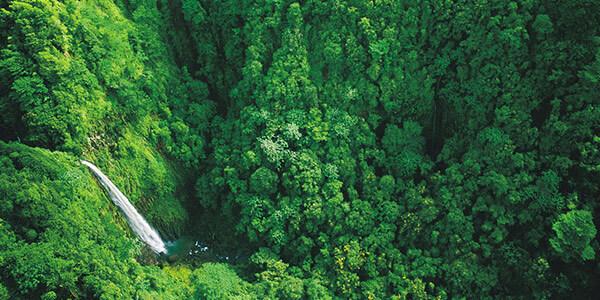 Isla del Coco de Costa Rica opta por premio Refugio Global Oceánico