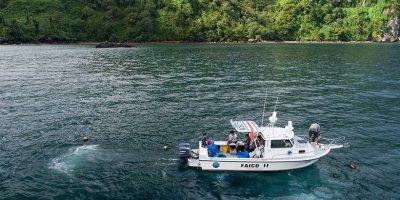 Investigación y conservación de tiburones migratorios del Parque Nacional Isla del Coco