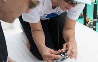 Investigarán comportamiento de tiburones migratorios en la Isla del Coco