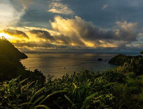 """Parque Nacional Isla del Coco es declarado """"Blue Park"""""""