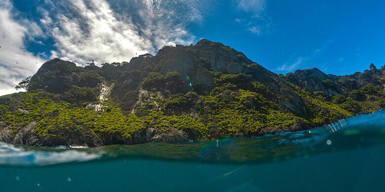 Isla del Coco sin plástico