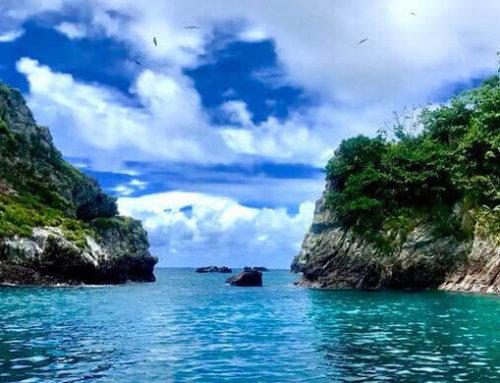 Corredor Marino del Pacífico Este Tropical (CMAR): Las islas unidas jamás serán vencidas