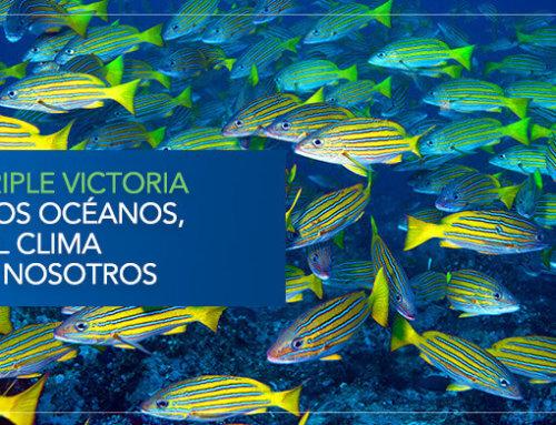 Una triple victoria para los océanos, para el clima y para nosotros
