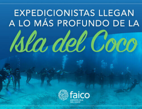 Expedicionistas llegan a lo más profundo de la Isla del Coco
