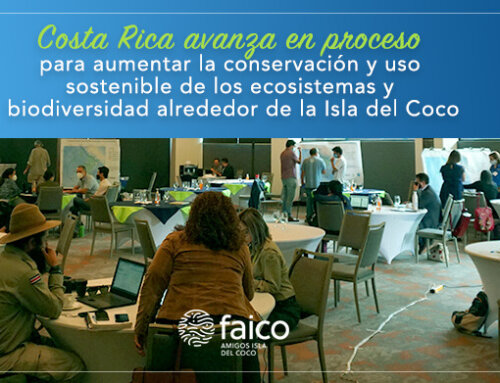 Costa Rica avanza en proceso para aumentar la conservación y uso sostenible de los ecosistemas y biodiversidad alrededor de la Isla del Coco