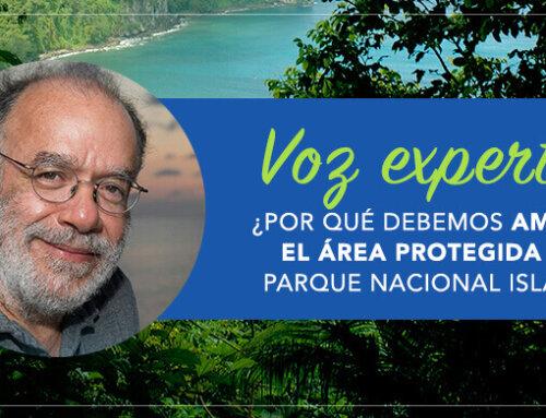 Voz experta: ¿Por qué debemos ampliar el área protegida del Parque Nacional Isla del Coco?